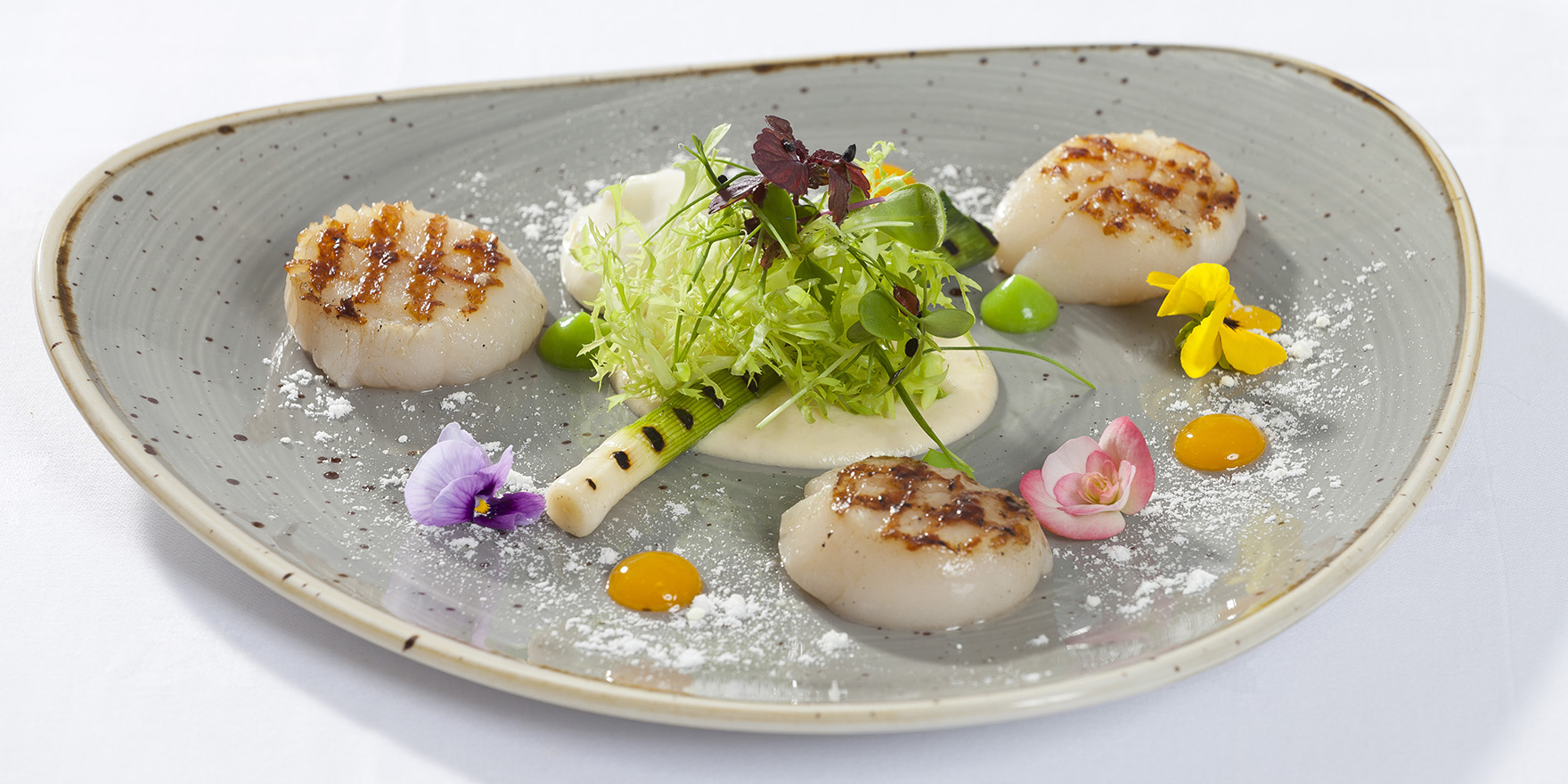 Hand dived Kilmore harbour sea scallops